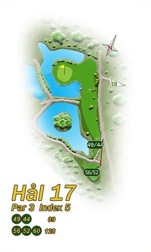 H17-20_HS-HI-300